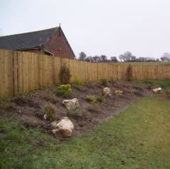 Close Boarded Fencing